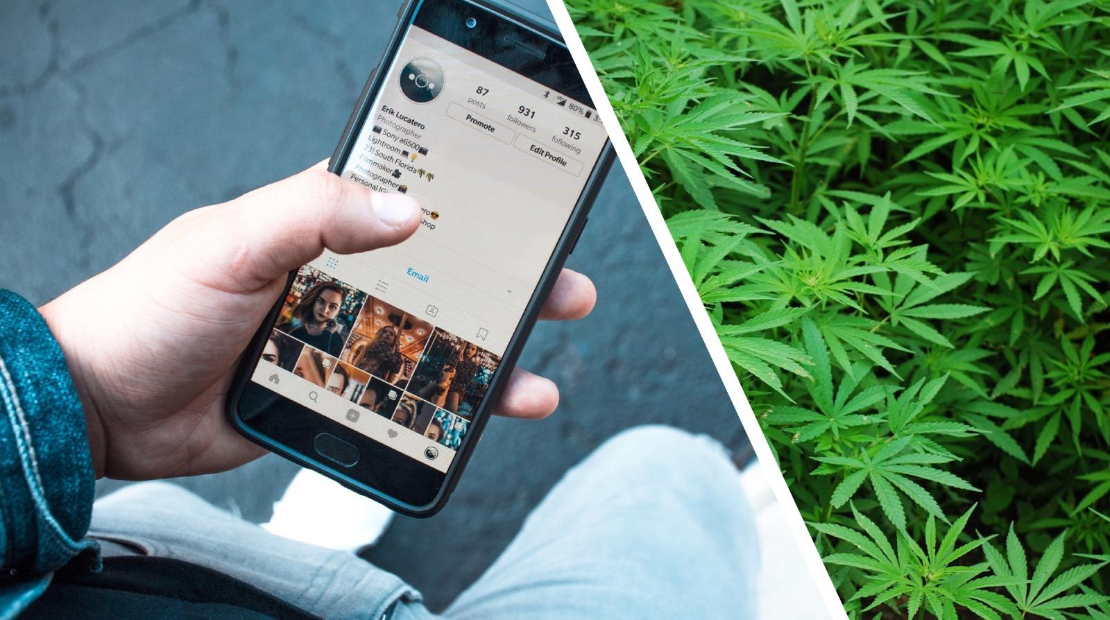 Come pubblicizzare la Cannabis Light senza trovarsi nei guai