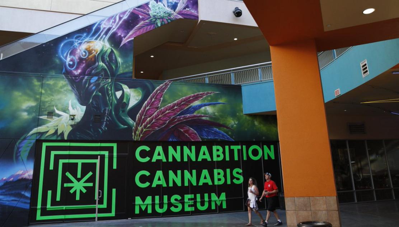 Las Vegas: il museo immersivo della Canapa è realtà