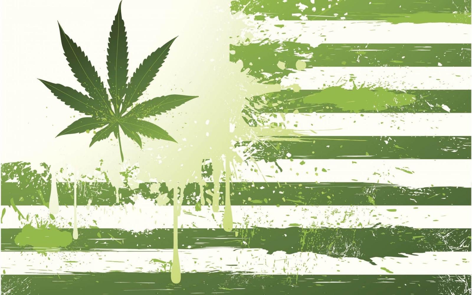 Anche il Massachussetts dice sì alla legalizzazione della Cannabis